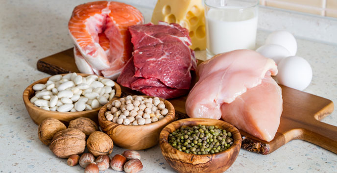 Proteina Animal vs Proteína Vegetal - ¿Cuál es la diferencia? - fedamadrid